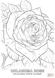 Oklahoma State Flower Coloring Page Free