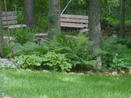Small Picture Garden Design Garden Design with Woodland garden Traditional