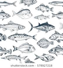 Fish Pattern New Fish Pattern Images Stock Photos Vectors Shutterstock