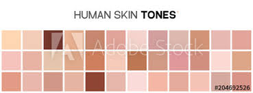 Skin Tone Color Chart Human Skin Texture Color Infographic