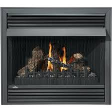 wood burning insert electric fireplace gas burner propane indoor best reviews canada natural
