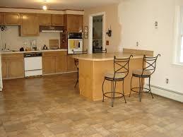 image of kitchen laminate flooring idea