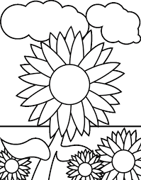 Small Picture Sunflower Coloring Page Flower Coloring Pages Free Sunflower 16610