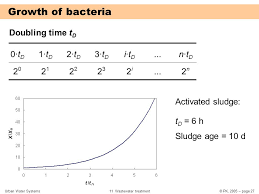 doubling time equation for bacteria tessshlo calculating
