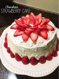 Chocolate Strawberry Cake The Sara Project