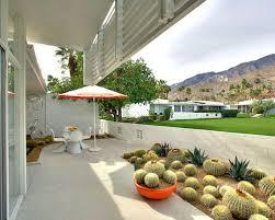 Small Picture Cactus Garden Houzz