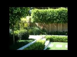 Small Picture Garden Design Ideas Nz YouTube