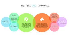 Comparison Chart Animal Comparison Chart