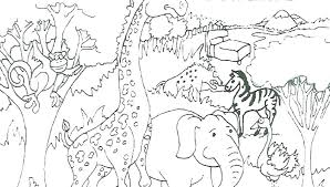Coloring Book Pages Animals Wild Animal Coloring Book Pages