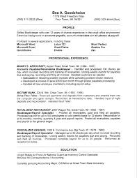 Resume Layout Example Enchanting Example Resume Layout Fabulous Resume Sample Layout For Examples