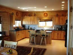 Overhead Kitchen Lighting Under Kitchen Cabinet Lights Ideas The Home Ideas