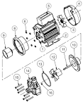 Image result for 7 pin trailer plug wiring diagram