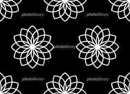 花模様モノクロ イラスト素材 1045416 フォトライブラリー