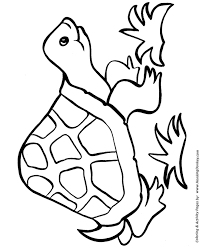 easy shapes coloring pages happy turtle