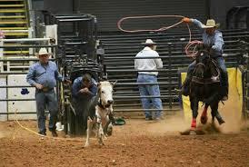 Mesquite Arena Rodeo Center Mesquite Tx 75149
