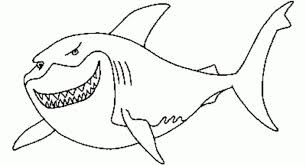 splendid design shark coloring pages pictures to color great white photos of pretty printable for toddlers realistic easy