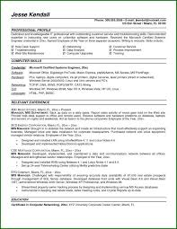 mis manager resume mis executive resume format resume resume examples