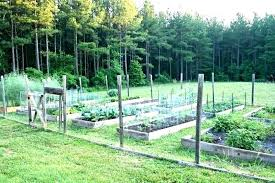 bed treated lumber for raised beds super easy garden under is pressure wood bad bedrooms