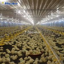 Light Livestock Light Steel Construction Livestock House Poultry Farm Price Buy Light Steel Construction Poultry Farm Livestock House Product On Alibaba Com