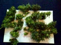 aerogarden weed harvest. red dwarf (buddha seedbank) day 78 harvest aerogarden cannabis grow - youtube weed