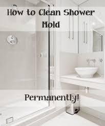 kill mildew in shower image cabinetandra tavern