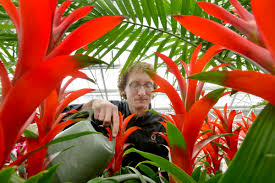 your gardening guide to twin cities greenhouses nurseries and retail centers