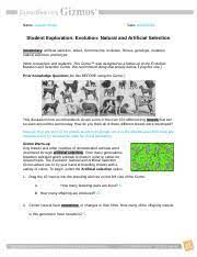 Maybe you would like to learn more about one of these? Evolutionnaturalartificialse Name Aayush Singh Date Student Exploration Evolution Natural And Artificial Selection Vocabulary Artificial Selection Course Hero