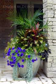 Small Picture A group planting in one large container is much more dramatic on