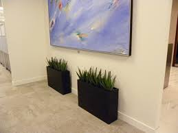 modern office plants. Small Artificial Agave Plants In Narrow Modern Containers A Toronto  Office 0