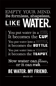 Bruce Lee Quotes Beauteous Top 48 Bruce Lee Quotes And Sayings