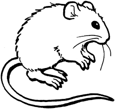 Small Picture Mouse Coloring Page Mouse Coloring Pages Preschool nebulosabarcom