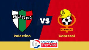 ((live)) guarani vs palestino   conmebol libertadores. Palestino Vs Cobresal Thesportsdb Com