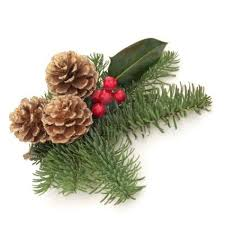 Pine Cone Christmas Decorations Boscobel 10914865 Christmas Decoration Of Holly Berry And Blue