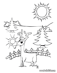 Small Picture Coloring Pages Red Nosed Reindeer Coloring Pages Hellokids