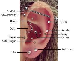 Chart Of Ear Piercings Ear Piercing Chart Helix Www Bedowntowndaytona Com