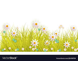 grass and flowers border. Interesting Flowers Intended Grass And Flowers Border A