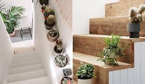 Diese art von dekoration hilft euch dabei, die grenzen zwischen flur und wohnbereich im idealfall verschwimmen zu lassen und bietet euch ein wohnliches, modernes. Treppe Frisch Und Kreativ Dekorieren Mit Pflegeleichten Pflanzen Wie Kakteen Freshouse