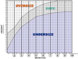 43 Comprehensive Sheltie Puppy Growth Chart