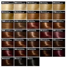 Hair Color Chart Garnier Www Bedowntowndaytona Com