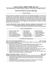 Account Manager Resume Examples New Business Manager Resume Samples
