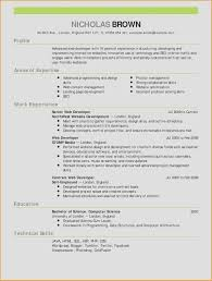 Java Web Developer Resume Sample Sql Developer Resume Sample Fresh 60 Beautiful Web Developer Resume 54
