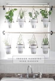 Hanging Kitchen Herb Garden 25 Best Ideas About Hanging Herb Gardens On Pinterest Wall Herb