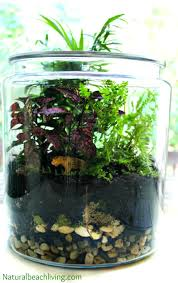 how to build a terrarium background your own waterfall how to build a terrarium terrrium science project waterfall