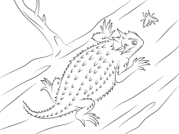 Small Picture Horned lizard coloring pages Free Coloring Pages