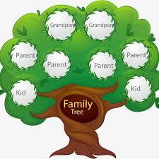 Building A Family Tree Capetalk Omny Fm