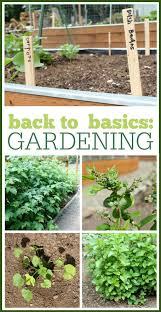 basic gardening. Brilliant Basic Back To Basics Gardening Learning All The Basics Of Growing Your Own  Produce In These Posts We Cover Basic Gardening Skills Planting Lists  On Basic Gardening