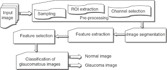 Fundus Chart Retinal Fundus Image For Glaucoma Detection A Review And