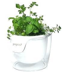 indoor hydroponic herb garden indoor hydroponic herb garden indoor herb garden smart hydroponics indoor herb garden indoor hydroponic herb garden diy