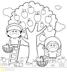 apple tree coloring page. Interesting Coloring Free Apple Tree Coloring Pages Page Of An Fresh  Fruit   And Apple Tree Coloring Page P