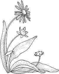 Small Picture Cartoon Daisy Flower coloring page Free Printable Coloring Pages